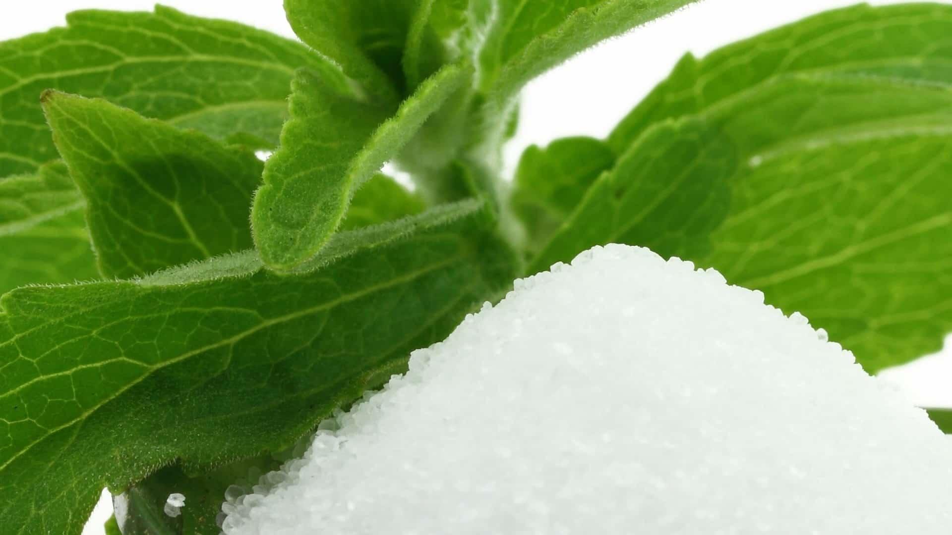 Stevia: ¿Cuáles son los mejores productos del 2020?