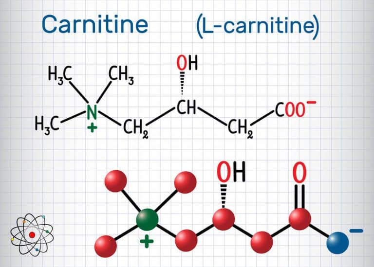 L-carnitina química