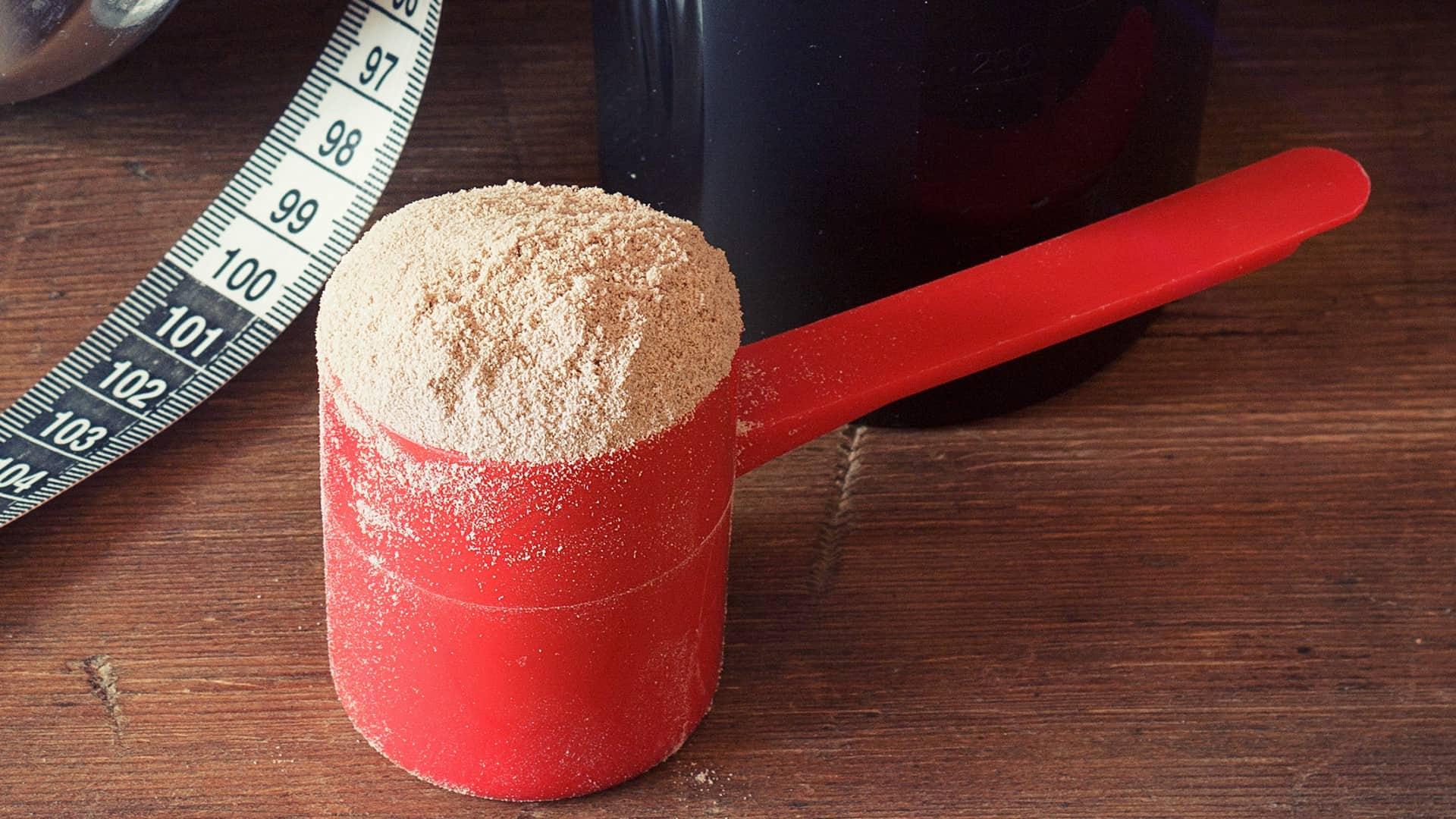 los 20 aminoacidos mas importantes de las protein as en polvo para bajar de peso