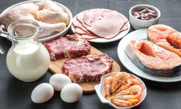 Carnes, huevos y lacteos.