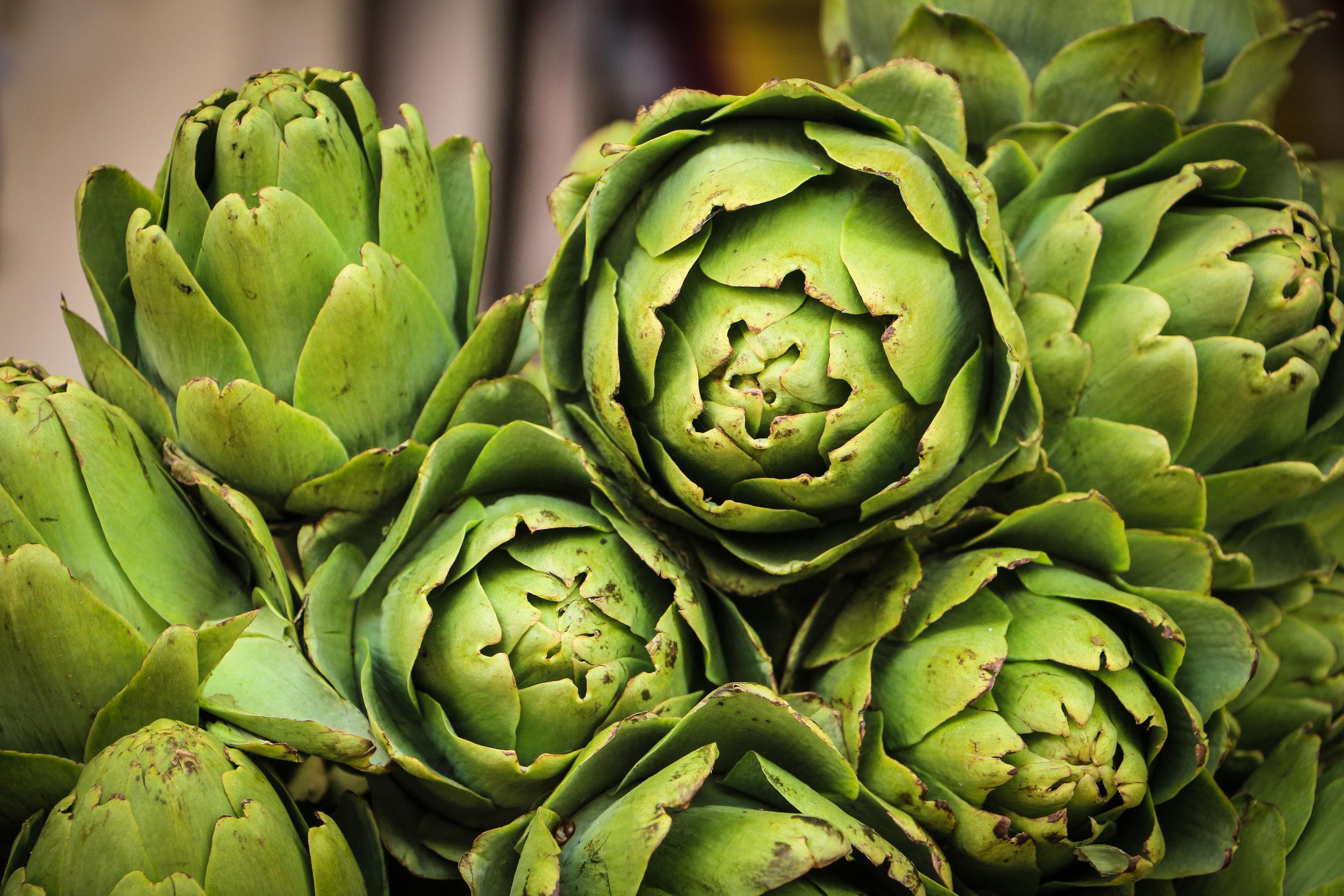 alcachofa verdes